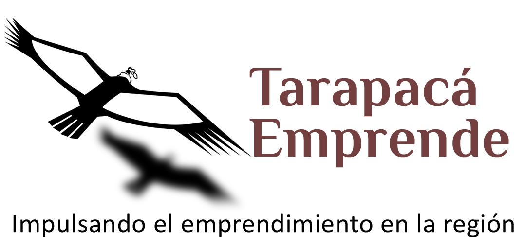 TARAPACÁ EMPRENDE PUBLICIDAD MARKETING WEB LIMITADA